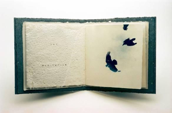 Ravens-copy-Flat_wp